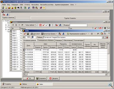 Окно программы-клиента системы MFinans